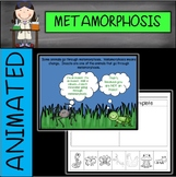 Metamorphosis PowerPoint (with animation)
