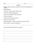 METAPHORS (GRADES 4 - 8)