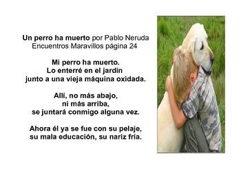Mi perro ha muerto por Pablo Neruda (Encuentros Maravillosos)