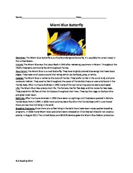 Miami Blue Butterfly - Review Article Questions Vocabulary