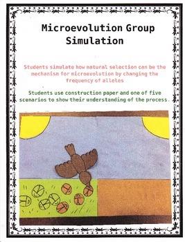 Microevolution Group Simulation