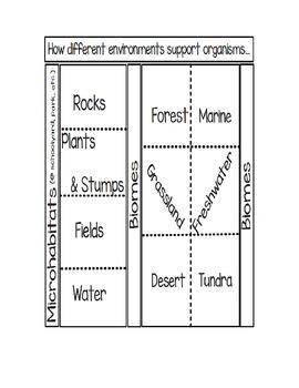Microhabitats and Biomes