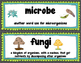 Microorganism Vocabulary Cards for Science Word Wall with
