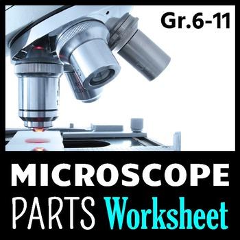 Microscope Parts - PowerPoint Worksheet {Editable}