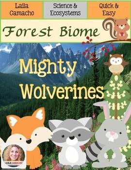 Forest Animals Wolverines