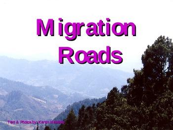 Monarch Migration Roads