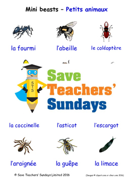 Mini-Beasts in French Worksheets, Games, Activities and Fl