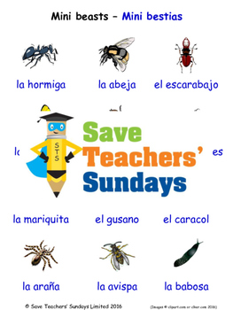 Mini-Beasts in Spanish Worksheets, Games, Activities and F
