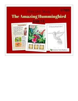 Mini Unit Study: Hummingbird