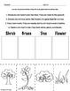 MiniScience: Plants
