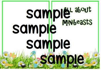 Minibeast non fiction booklets