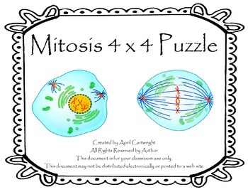 Mitosis 4x4 Puzzle
