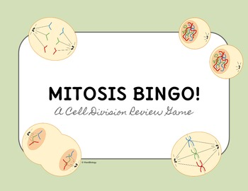 Mitosis BINGO Review Game