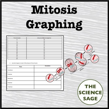 Mitosis Graphing Activity