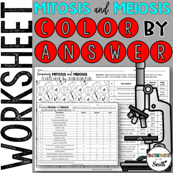 Mitosis VS Meiosis Color by Number Worksheet for Review or