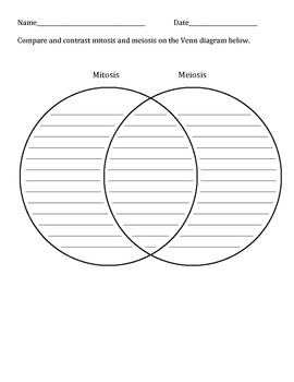 Mitosis and Meiosis Worksheets