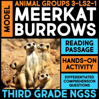 Model a Meerkat Home - Ecosystems: Animal Group Behavior &
