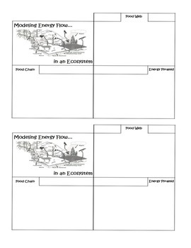 Modeling Energy Flow in Ecosystems:Food Chain, Food Web, E