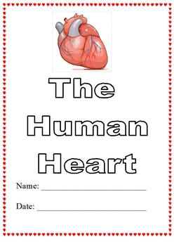 Modified Anatomy Notes & Test; Human Heart Unit, Different