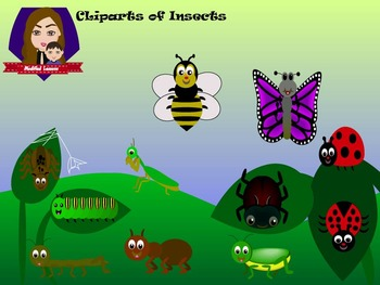 Modified Lessons Clipart of Insects (Colored and BW)