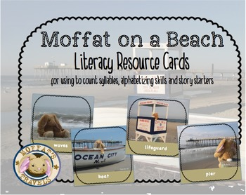Moffat the Rabbit On A Beach Vocabulary/Activity Cards