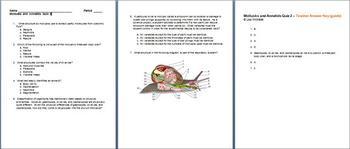 Mollusks and Annelids Quiz 2