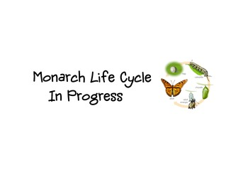 Monarch Life Cycle In Progress Sign
