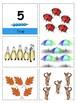 Montessori Counting Work--Montessori Math