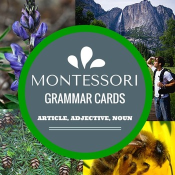 Montessori Grammar Cards with Article, Adjective, and Noun