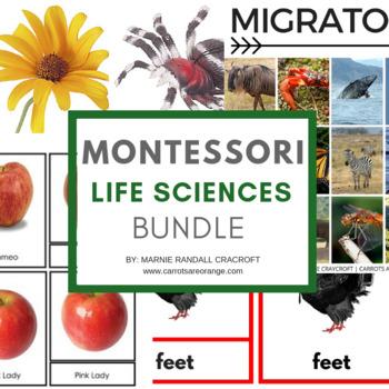 Montessori Life Sciences Activities Pack (13 ACTIVITIES/75
