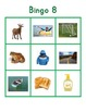 "Montessori Long Vowel Phonics Bingo- ""Green Series"""