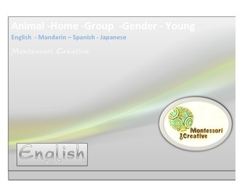 Montessori Noun gender, family, home and sound cards with image