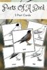 Montessori Parts Of A Bird 3 Part Cards Montessorilove