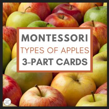 Montessori Types of Apples 3 Part Cards