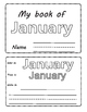 Months of the Year. January. Flipbook