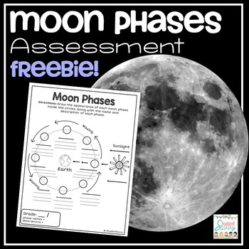 Moon Phases Freebie!