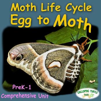 Moth Life Cycle - Egg to Moth