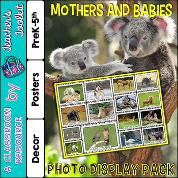 Mothers and Babies Photo Poster Display Pack {UK Teaching