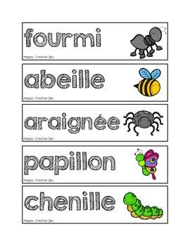 Mots-étiquettes des insectes