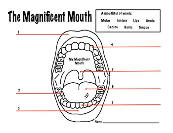 Mouth Dental Health Magnificent Mouth Worksheet
