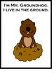 Mr. Groundhog's Day