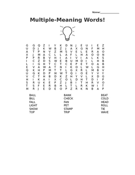 Multiple Meaning Words Word Search!