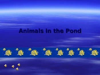 Multiplying Animals in the Pond