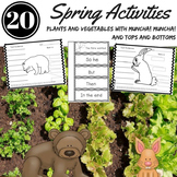 SPRING ACTIVITIES Plants Life Cycles Nonfiction Text and B