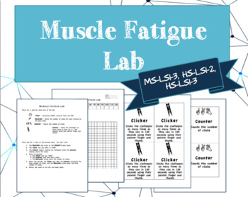 Muscle Fatigue Lab