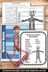Muscular System Interactive Science Notebook Activity Huma