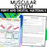 Muscular System Nonfiction Article and Activity