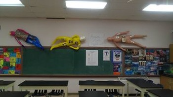 Human Body System Project for HS Anatomy & Physiology