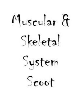 Muscular and Skeletal System Scoot