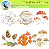 Mushroom Clip Art - 12 Piece Set - Color and Blackline Ill